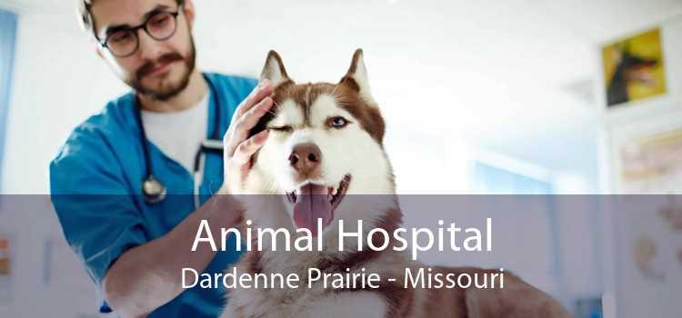 Animal Hospital Dardenne Prairie - Missouri
