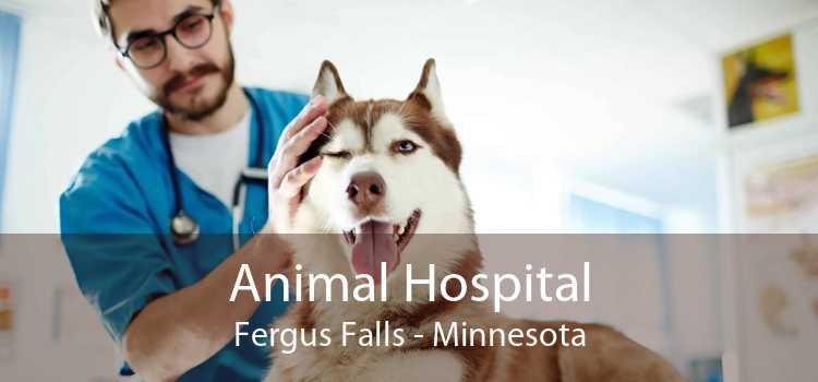 Animal Hospital Fergus Falls - Minnesota