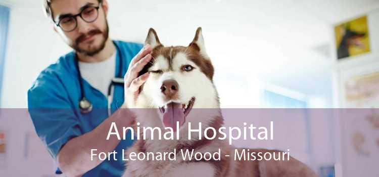 Animal Hospital Fort Leonard Wood - Missouri