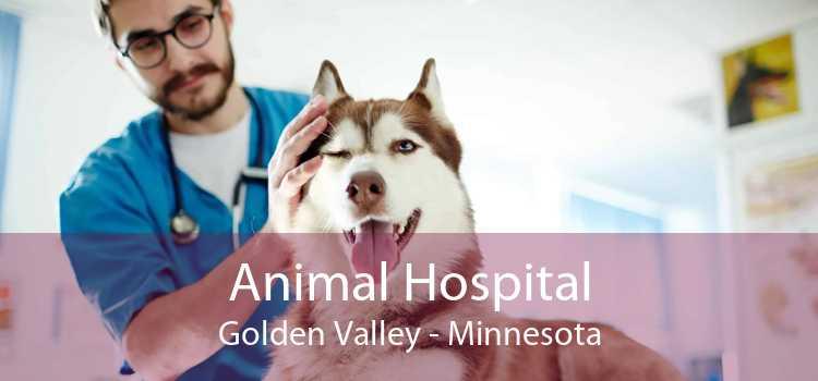 Animal Hospital Golden Valley - Minnesota