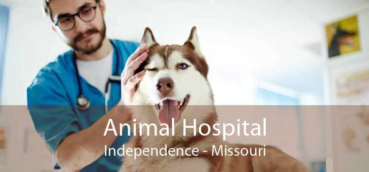 Animal Hospital Independence - Missouri