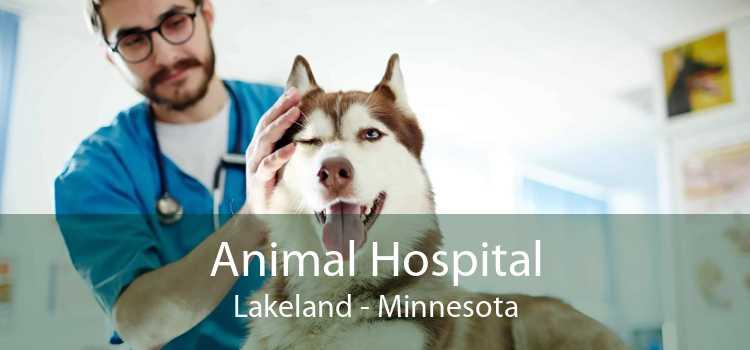 Animal Hospital Lakeland - Minnesota