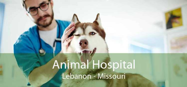 Animal Hospital Lebanon - Missouri