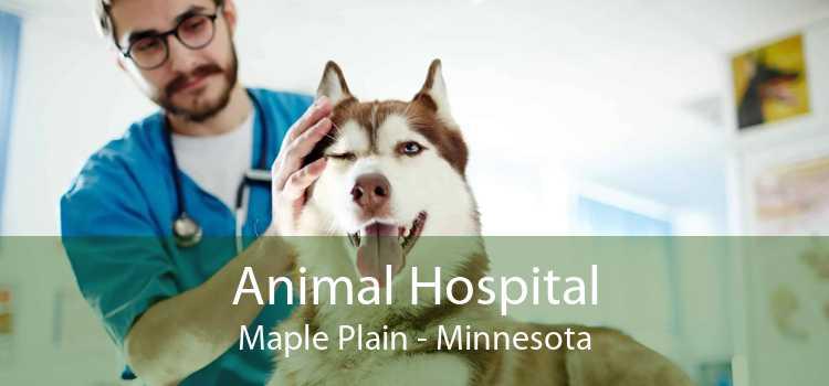 Animal Hospital Maple Plain - Minnesota
