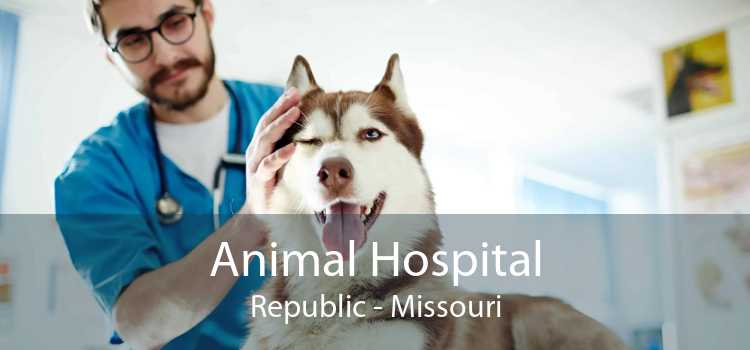 Animal Hospital Republic - Missouri