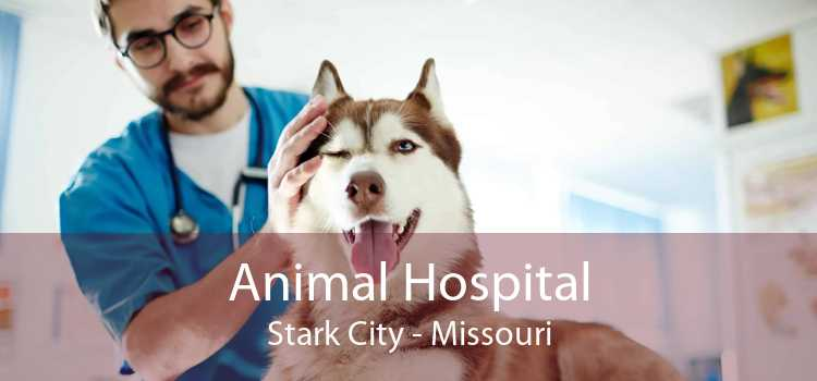Animal Hospital Stark City - Missouri