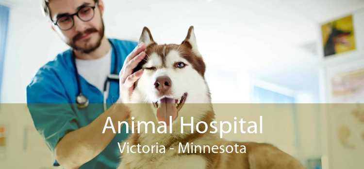 Animal Hospital Victoria - Minnesota