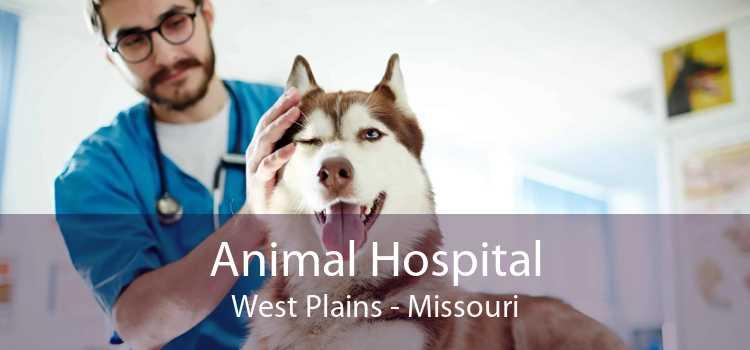 Animal Hospital West Plains - Missouri