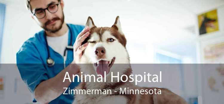 Animal Hospital Zimmerman - Minnesota