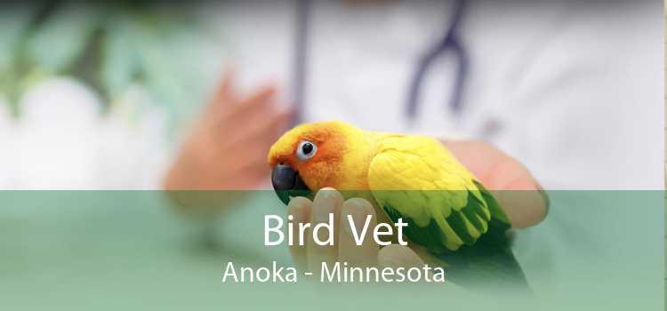Bird Vet Anoka - Minnesota