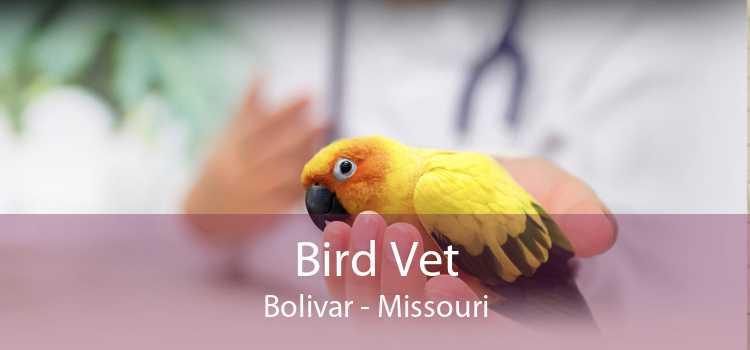 Bird Vet Bolivar - Missouri