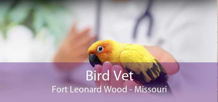 Bird Vet Fort Leonard Wood - Missouri