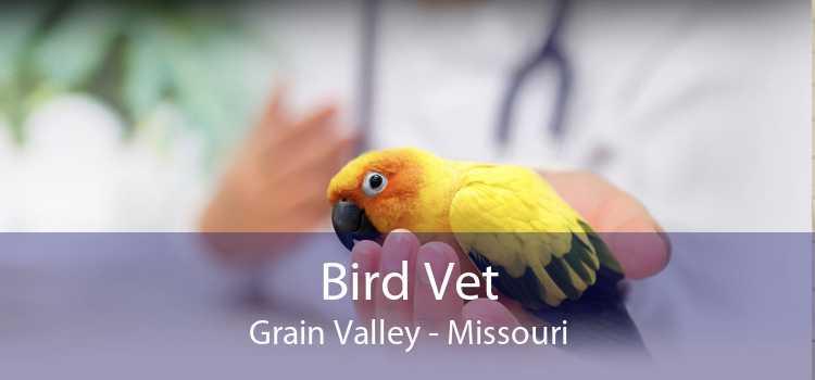 Bird Vet Grain Valley - Missouri