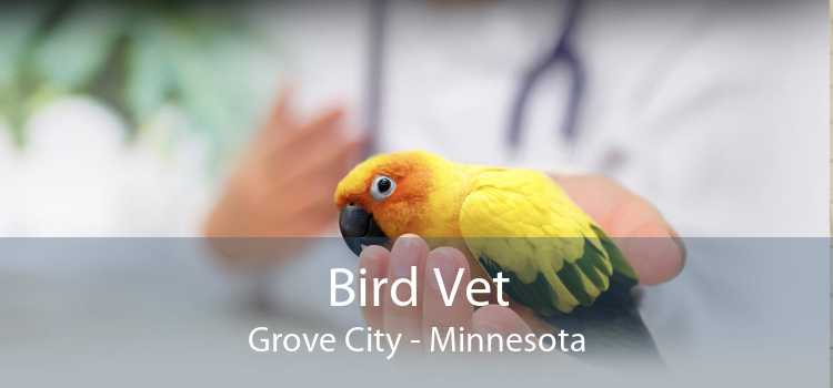 Bird Vet Grove City - Minnesota