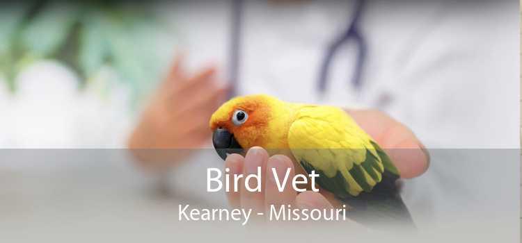 Bird Vet Kearney - Missouri