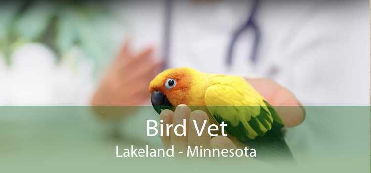 Bird Vet Lakeland - Minnesota