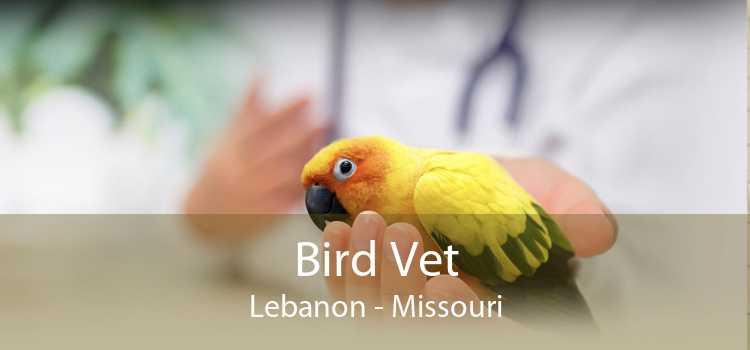 Bird Vet Lebanon - Missouri