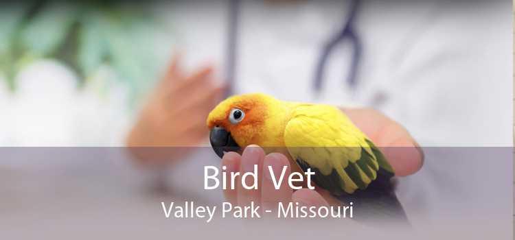 Bird Vet Valley Park - Missouri