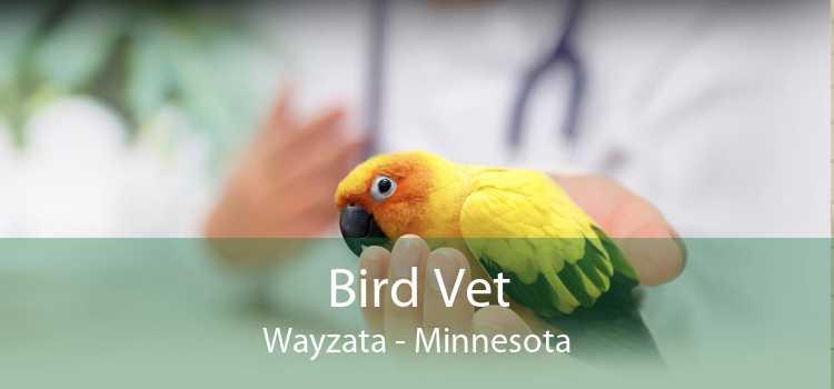 Bird Vet Wayzata - Minnesota