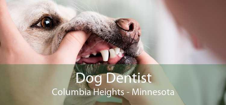 Dog Dentist Columbia Heights - Minnesota