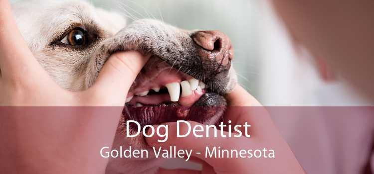 Dog Dentist Golden Valley - Minnesota