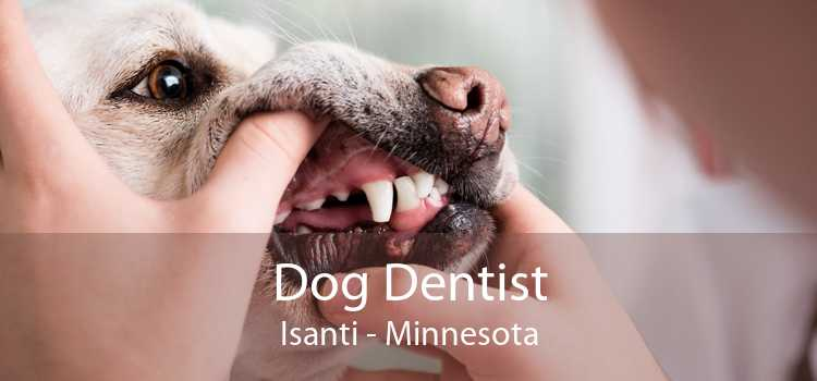 Dog Dentist Isanti - Minnesota