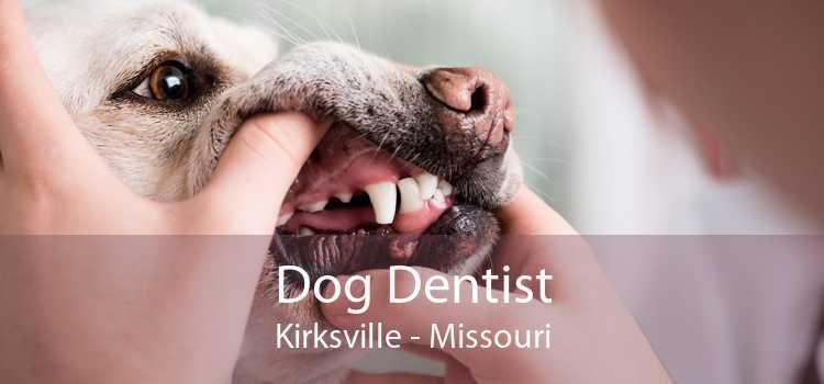 Dog Dentist Kirksville - Missouri