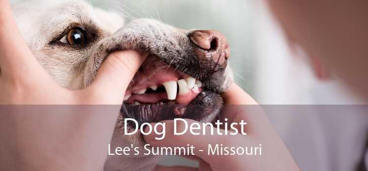 Dog Dentist Lee's Summit - Missouri