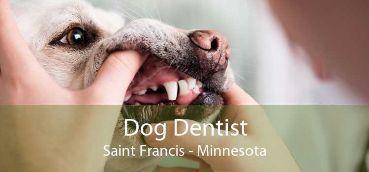Dog Dentist Saint Francis - Minnesota