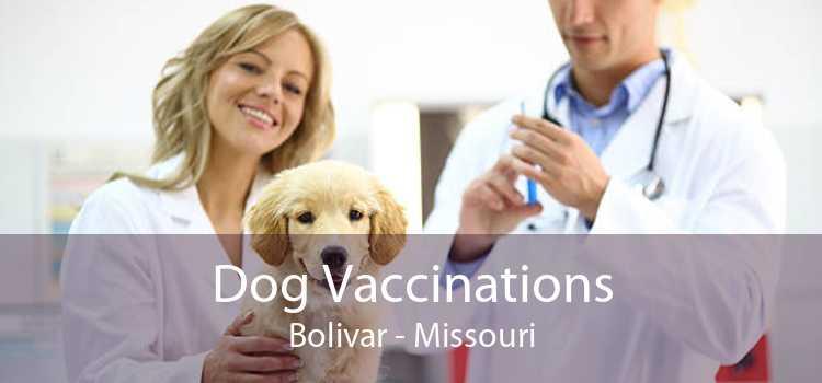 Dog Vaccinations Bolivar - Missouri