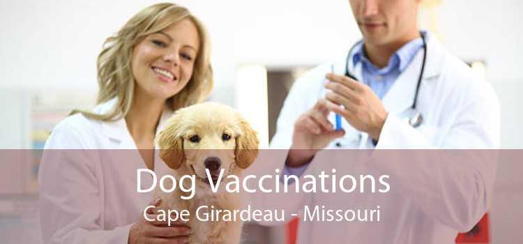 Dog Vaccinations Cape Girardeau - Missouri
