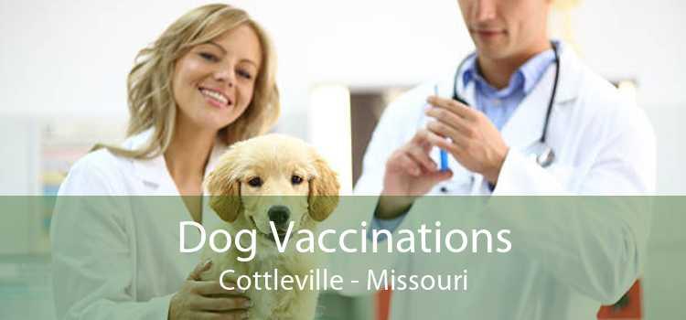 Dog Vaccinations Cottleville - Missouri