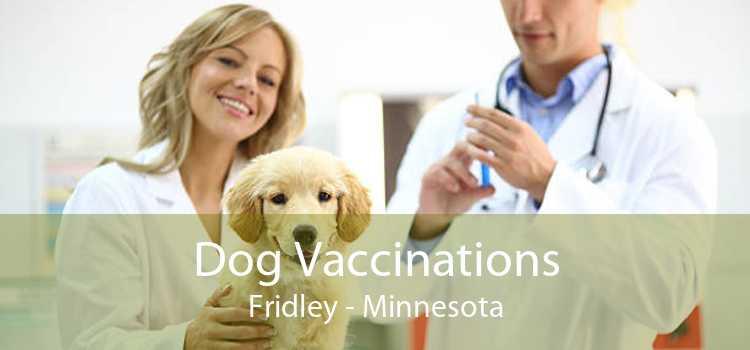 Dog Vaccinations Fridley - Minnesota