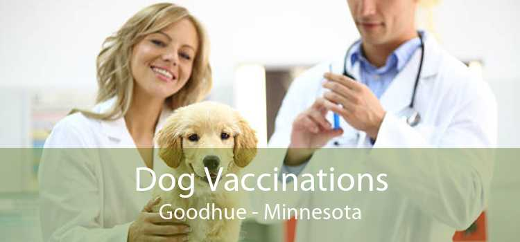 Dog Vaccinations Goodhue - Minnesota