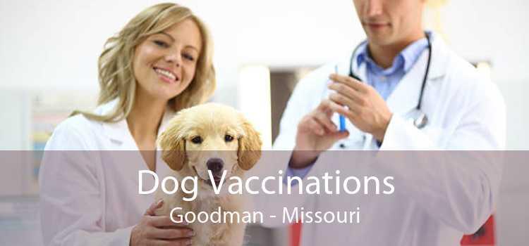 Dog Vaccinations Goodman - Missouri