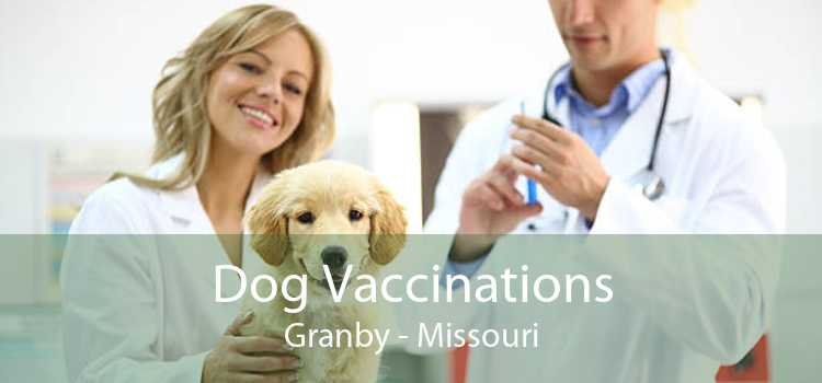 Dog Vaccinations Granby - Missouri