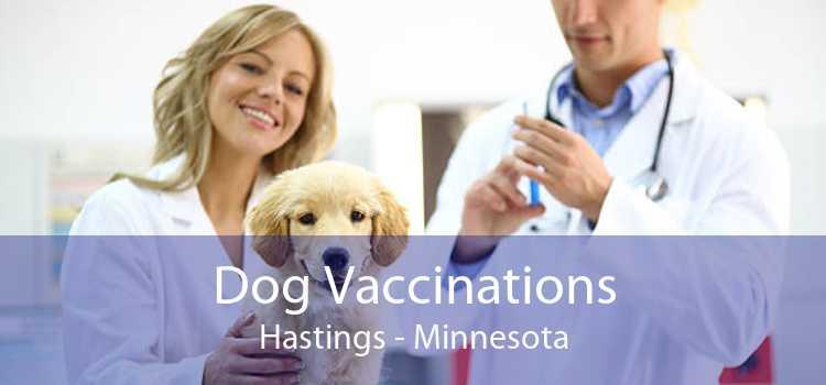 Dog Vaccinations Hastings - Minnesota