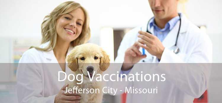 Dog Vaccinations Jefferson City - Missouri