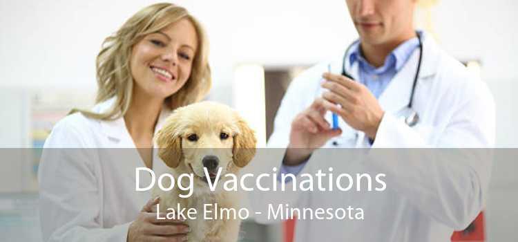 Dog Vaccinations Lake Elmo - Minnesota