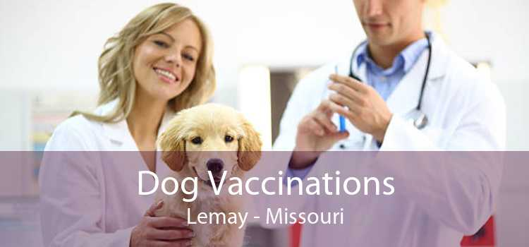 Dog Vaccinations Lemay - Missouri