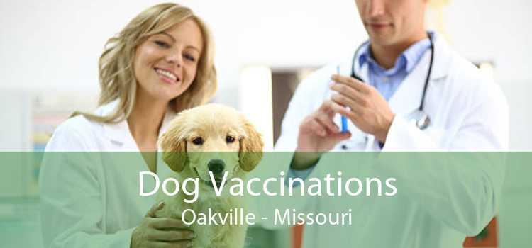 Dog Vaccinations Oakville - Missouri