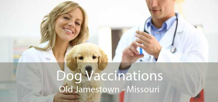 Dog Vaccinations Old Jamestown - Missouri