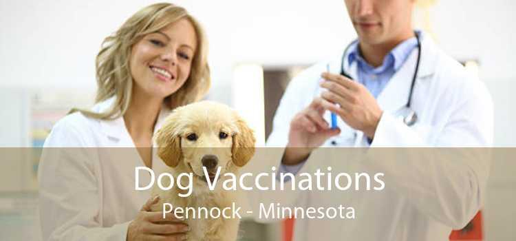 Dog Vaccinations Pennock - Minnesota