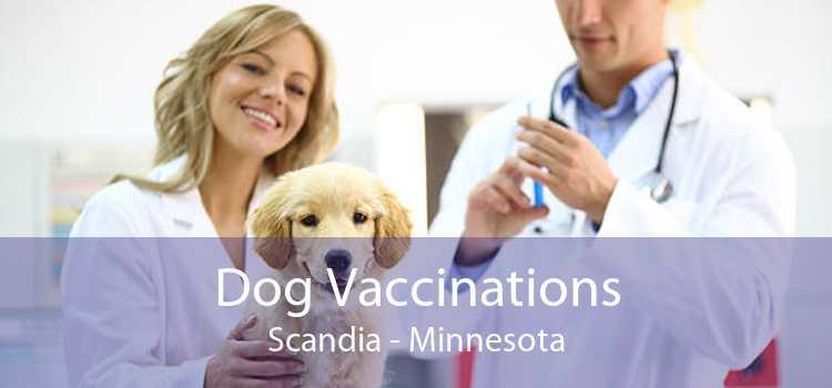 Dog Vaccinations Scandia - Minnesota