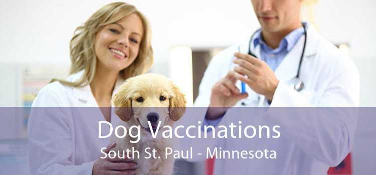 Dog Vaccinations South St. Paul - Minnesota
