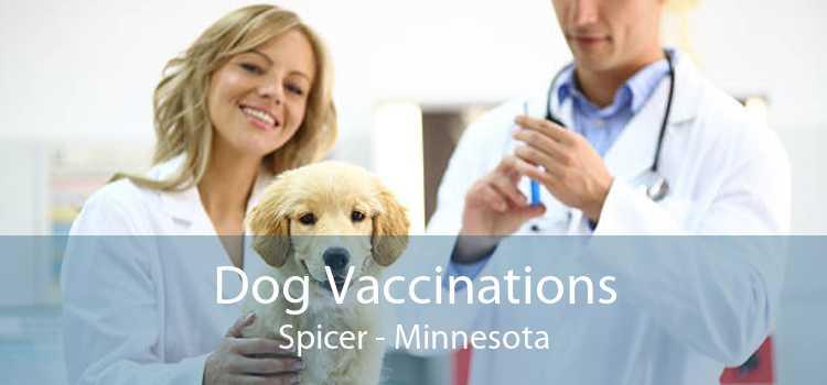 Dog Vaccinations Spicer - Minnesota