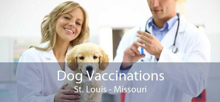 Dog Vaccinations St. Louis - Missouri
