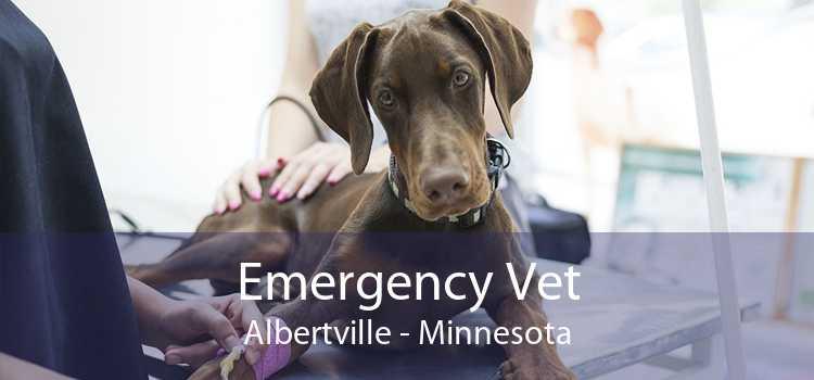 Emergency Vet Albertville - Minnesota