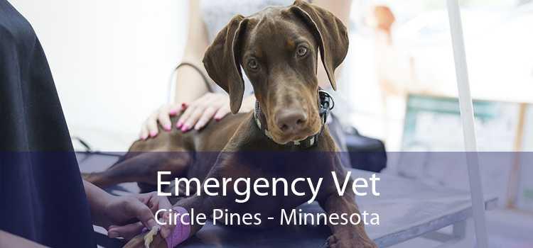 Emergency Vet Circle Pines - Minnesota