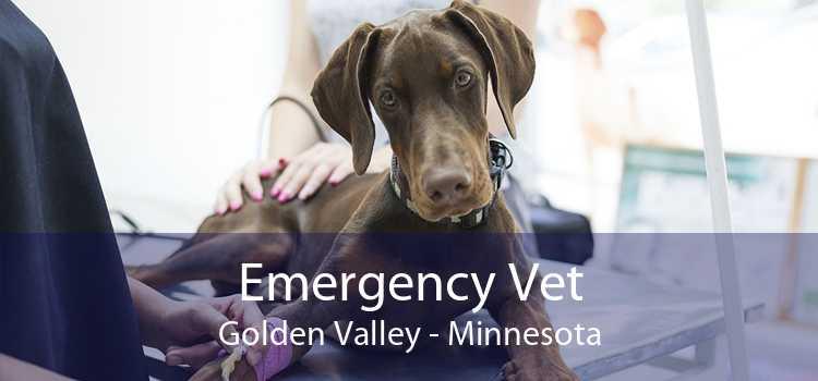 Emergency Vet Golden Valley - Minnesota